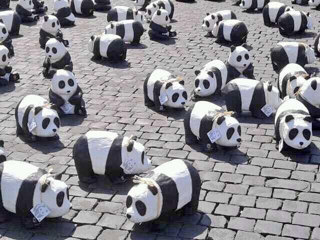 G7 AMBIENTE WWF