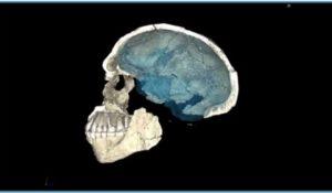 Homo sapiens più antico di 100mila anni. Le lancette della storia fanno un balzo indietro