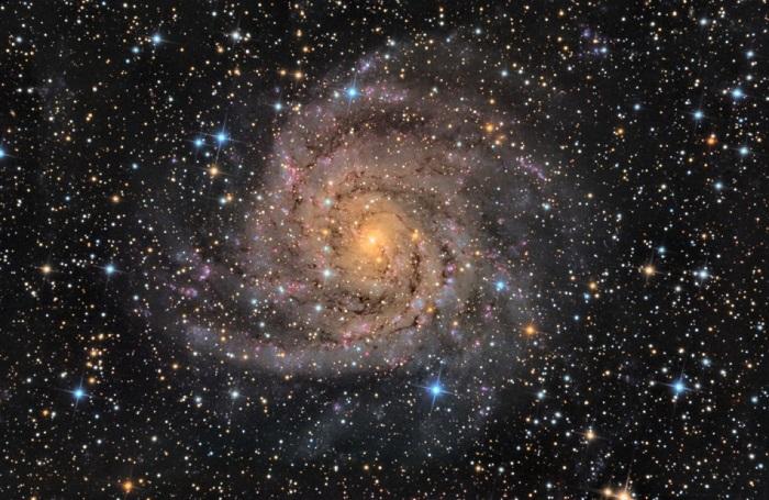 Hubble fotografa la galassia nascosta