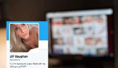 Twitter botnet