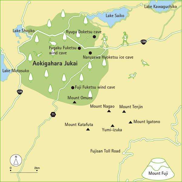 aokigahara 2