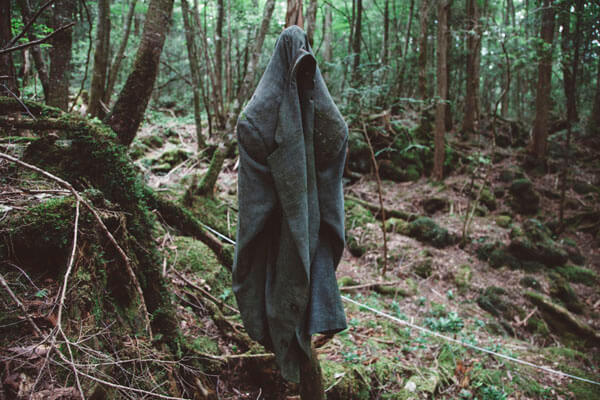 foresta dei suicidi (2)