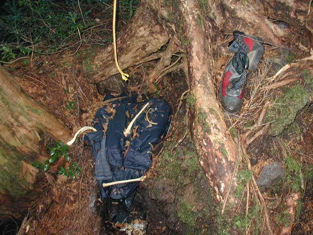 foresta dei suicidi (5)