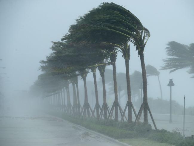 uragano irma (4)