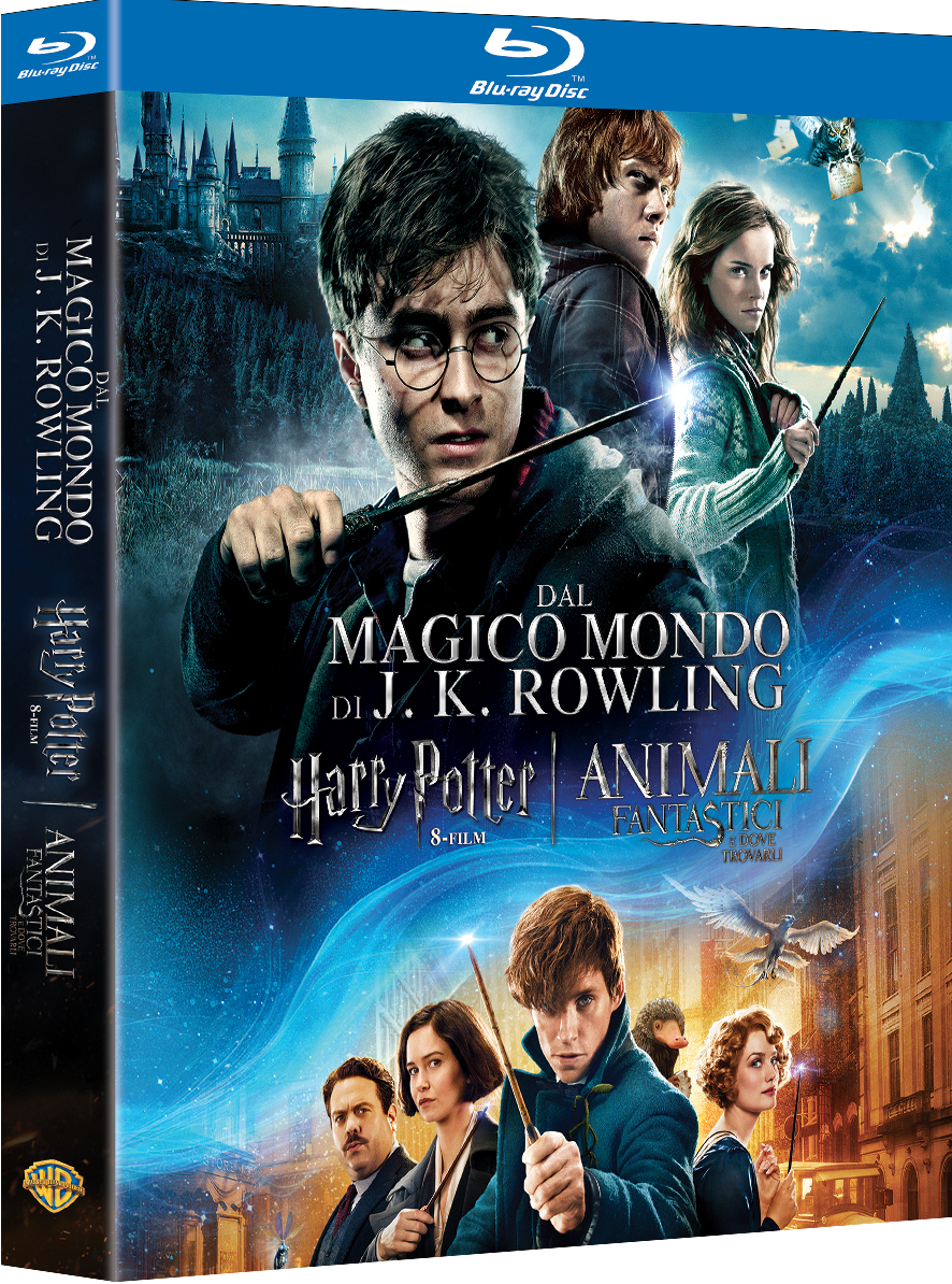 Harry Potter arriva in home video