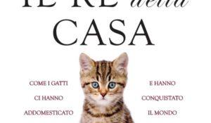 Il re della casa, il gatto alla conquista del mondo (non solo social)