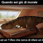 """""""braccine corte"""" del t. rex"""