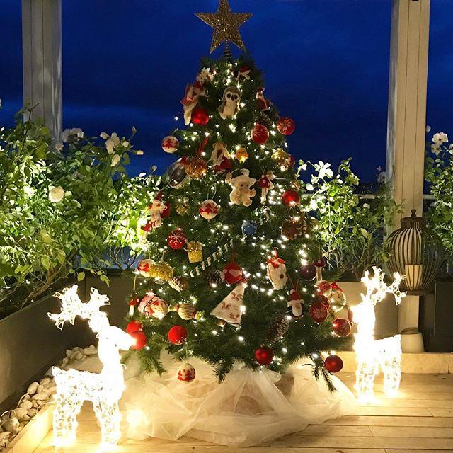 Albero Di Natale 8 Dicembre.Natale Vip Ecco Le Foto Degli Alberi Dei Personaggi Famosi