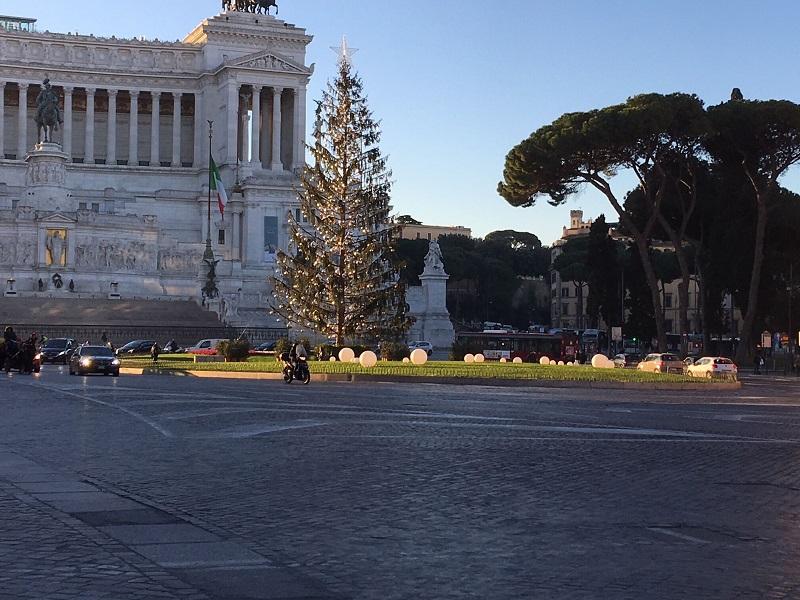 spelacchio albero di natale roma