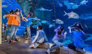 Tutti in maschera per Carnevale a Gardaland SEA LIFE Aquarium