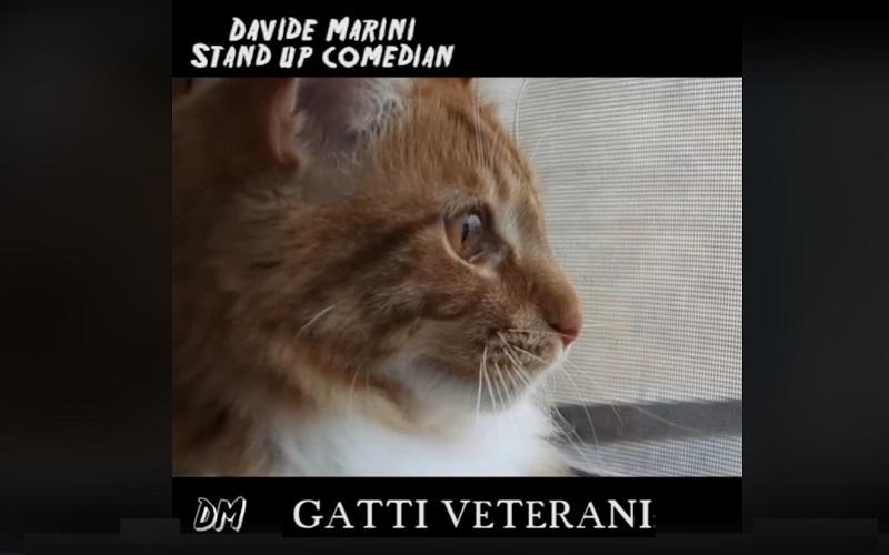 Gatti Veterani Jonny E Il Vietnam Negli Spassosi Video Di Davide