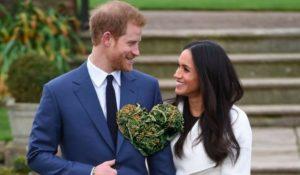 Il nipote di Meghan Markle crea erba speciale per il matrimonio reale