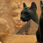 Egitto, scoperta necropoli felina: gatti mummificati di 6mila anni fa