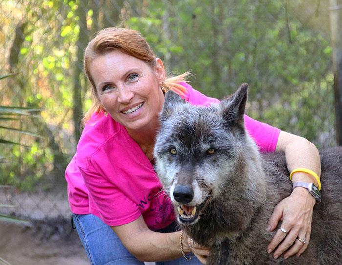rescue-story-dogwolf-yuki-shy-wolf-sanctuary-2
