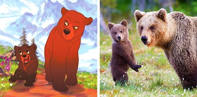 animali cartoni animati (7)