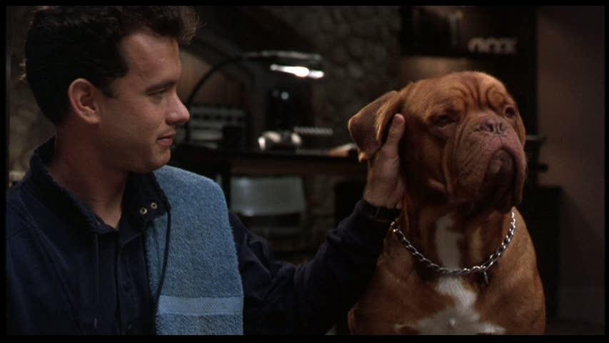 Il 'casinaro', protagonista del film 'Turner e il casinaro'