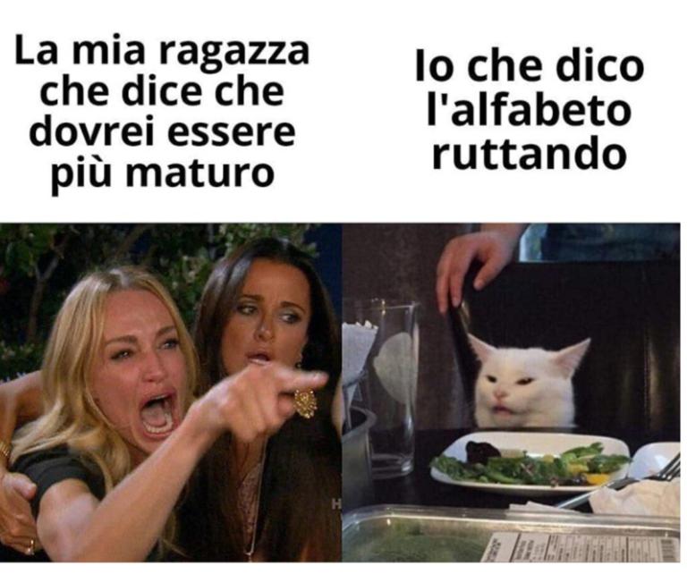 gatto meme (1)