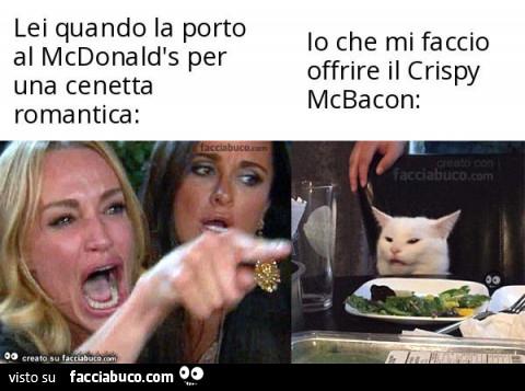 gatto meme (2)