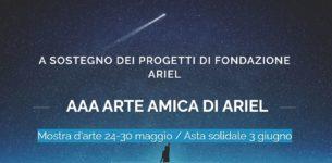 AAA Arte Amica di Ariel