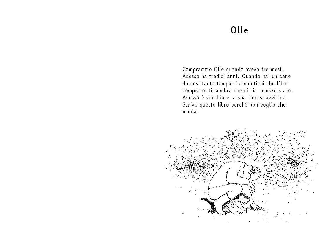 Ollie pagina 1