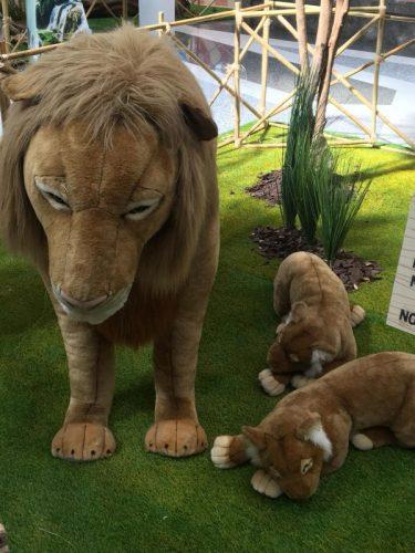 lo zoo che vorrei (10)