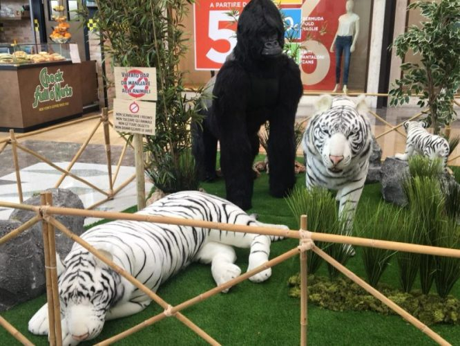 lo zoo che vorrei (12)