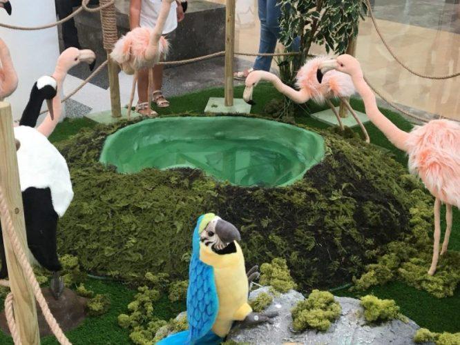 lo zoo che vorrei (3)