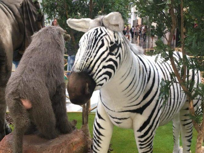 lo zoo che vorrei (5)