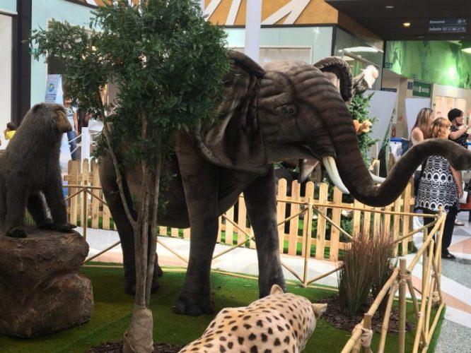 lo zoo che vorrei (9)